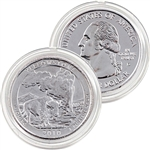 2010 Yellowstone Platinum Quarter - Denver