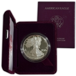 1991 Silver Eagle Government Issue - Proof